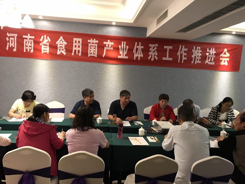 河南省食用菌产业技术体系野生资源调查