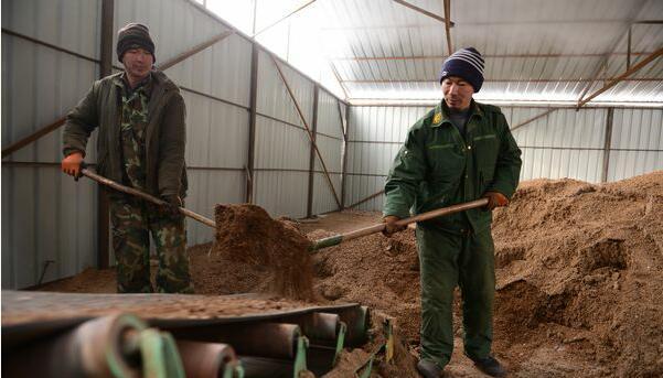 黑龙江:东京城重点国有林管理局探索废弃菌袋综合利用