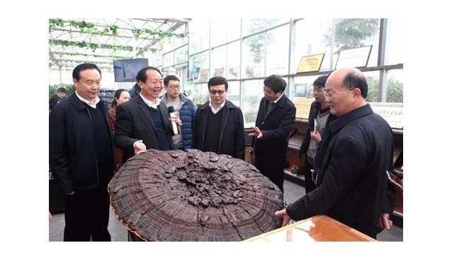 农业农村部调研组到河南世纪香公司调研考察