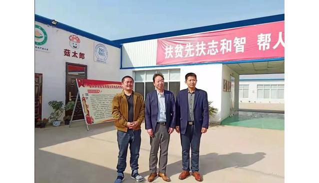 日本客户到河南菇太郎公司考察洽谈