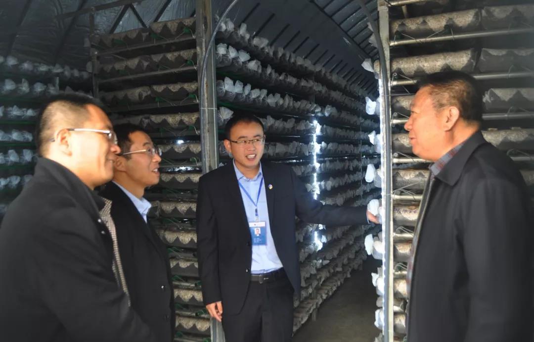 山东:淄博市淄川区副区长李家鹏一行来
