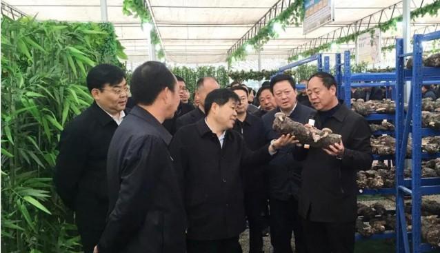 河南:长葛市党政考察团莅临世纪香公司观摩食用菌产业扶贫情况