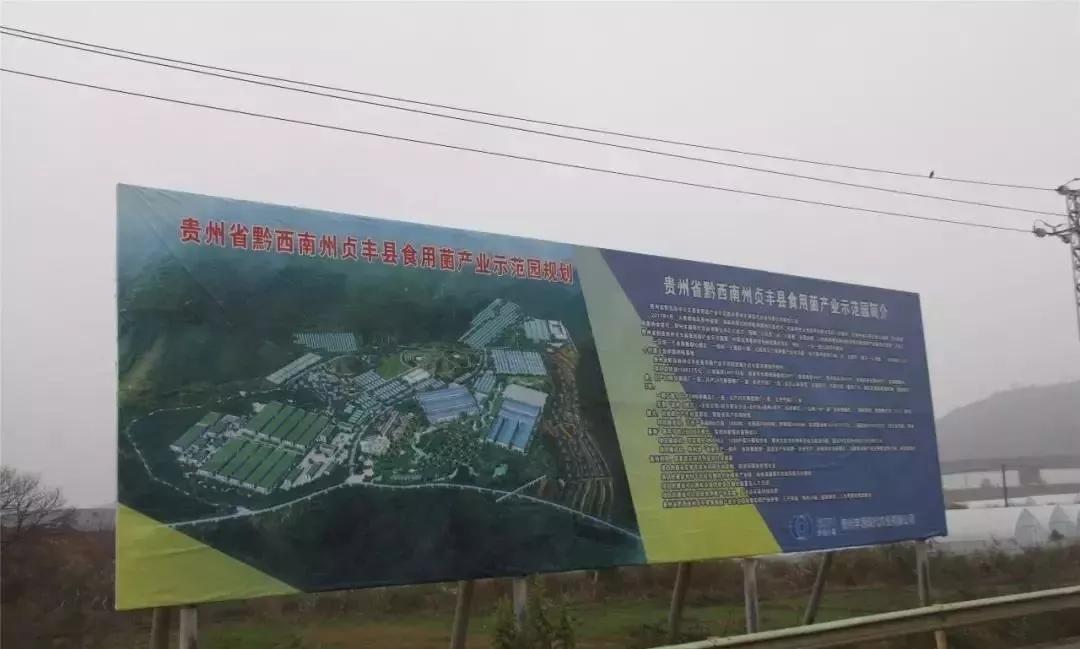 总投资20亿元|中国食用珍稀菌产业园在贵州贞