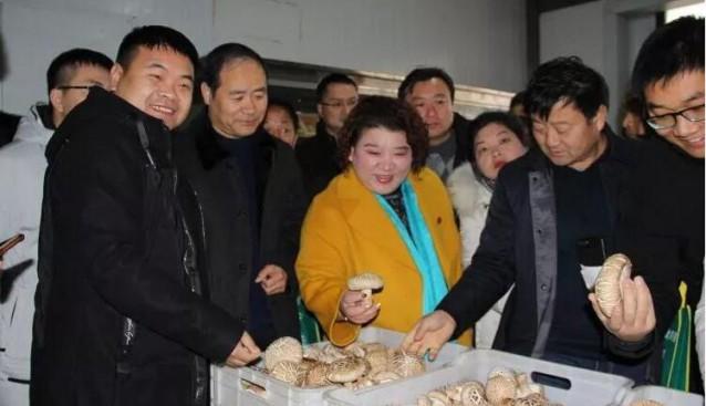 河南:灵宝市乡土人才汇聚昌盛公司观摩