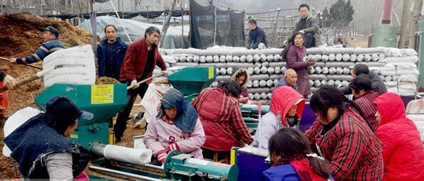 河南:新春抓紧种香菇 加快脱贫致富路