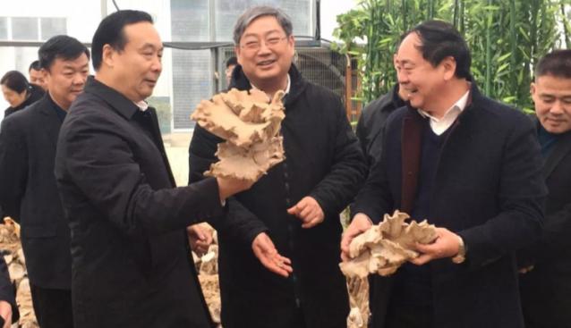 河南:田开盛副厅长一行到世纪香产业园调研产业扶贫工作