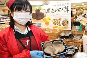 """日本:和歌山县所产黑鲍鱼菇荣获""""优质品牌农产品""""称号"""