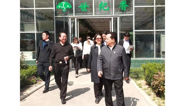 河南省委办公厅调研组莅临世纪香公司