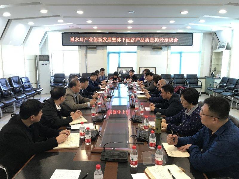 黑木耳产业创新发展暨林下经济产品质量提升座谈会在哈尔滨召开
