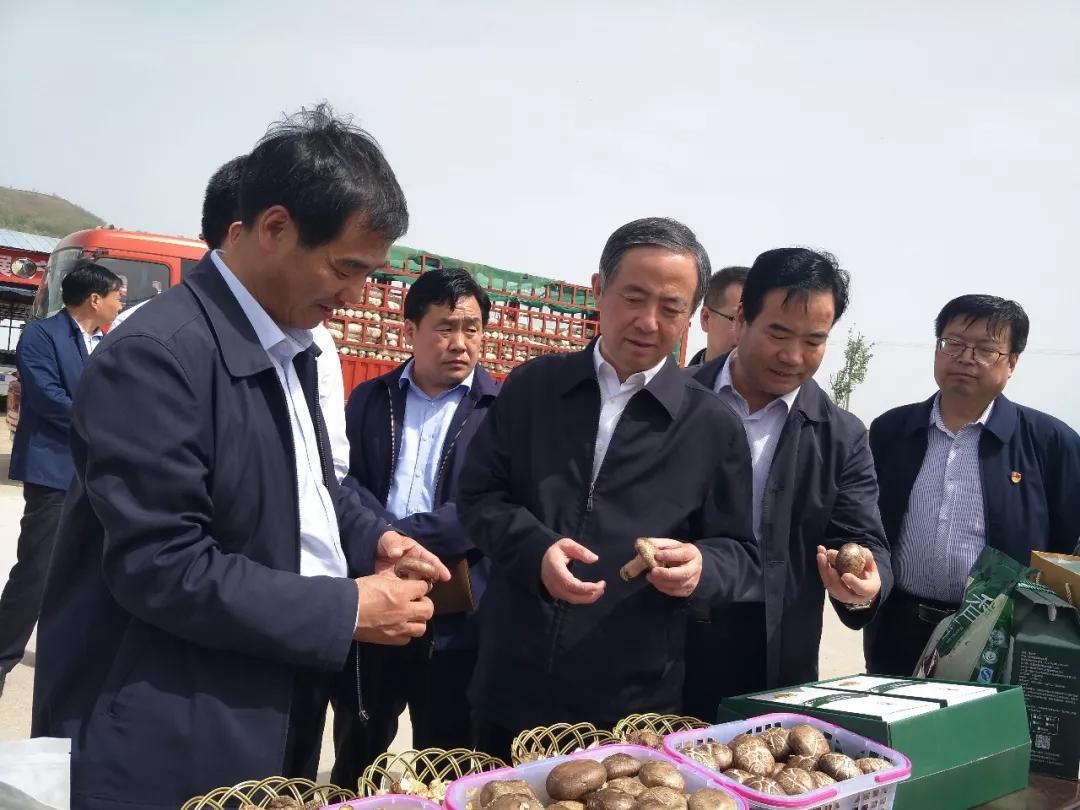 陕西:国务院扶贫办副主任陈志刚到陇县调研食用菌产业扶贫工作