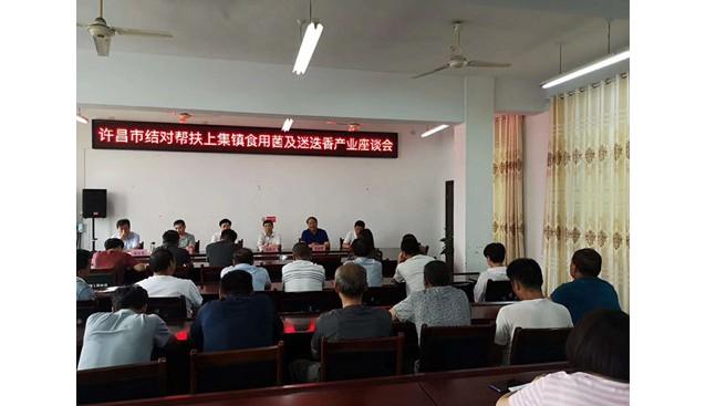 河南:许昌市科技结对帮扶淅川县 举办食用菌产业座谈会