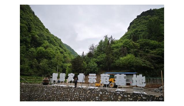 陕西:佛坪县打造智慧农业示范基地 助力脱贫攻坚成果巩固提升