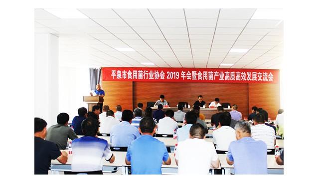 河北:四名外省人当选平泉市食用菌行业协会副会长