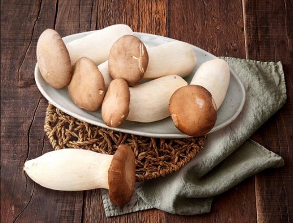 韩国:杏鲍菇鲜品批发价格同比下降 每公斤仍可卖到3300韩元