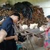 《与新中国一起走过》摄制组拍摄顺昌县大历镇科技特派员高允旺发展林下竹荪