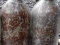 平菇孢子分离制种技术的简易分离法