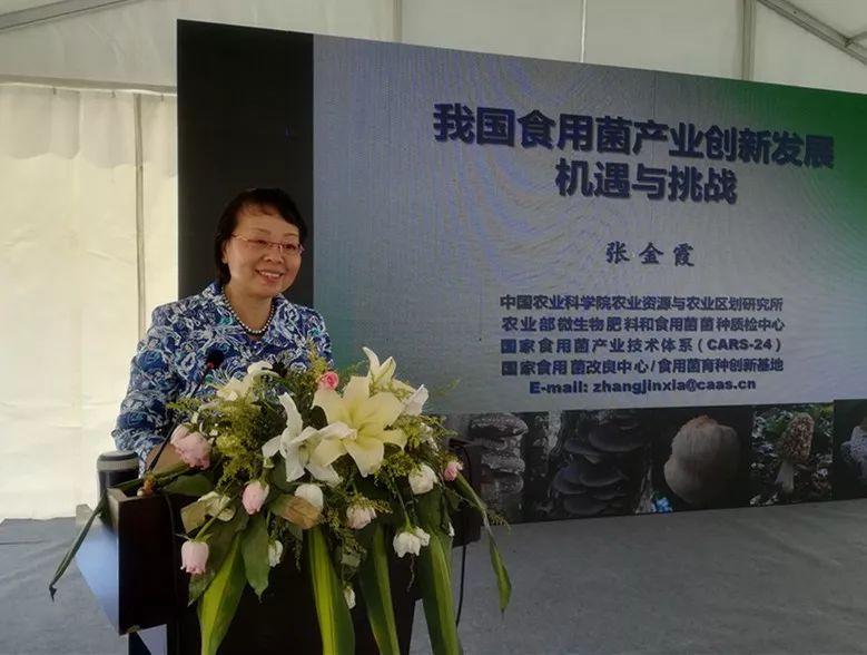 国家食用菌产业技术体系首席科学家张金霞:把科研论文写在脱贫攻坚的大地上