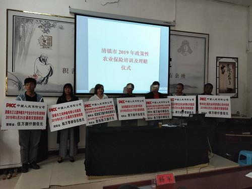 """贵州:中国人民保险为受灾菇农撑起""""保"""