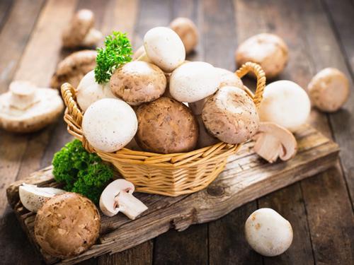 美國農業部將9月份指定為美國蘑菇月
