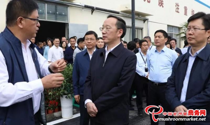 襄阳市委书记李乐成考察调研襄阳大山健康食品股份有限公司