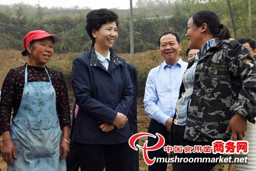 贵州省委副书记、省长谌贻琴赴纳雍县调研食用菌产业