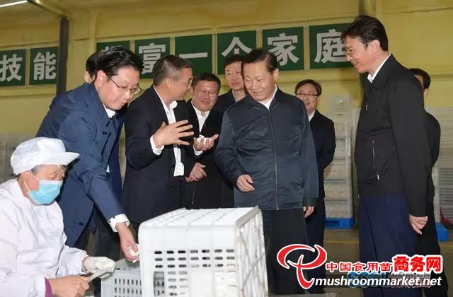 四川省委书记、省人大常委会主任彭清华到蓬溪县调研食用菌产业