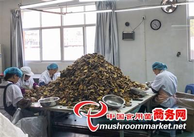 今年1-10月浙江大生源食品有限公司销售额超1500万