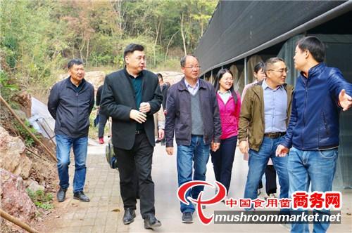 华中农业大学边银丙教授一行赴随县调研食用菌产业发展