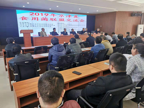 京津冀食用菌联盟交流会在河北省阜平县
