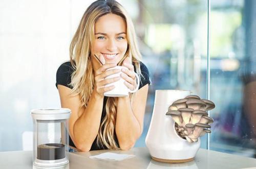 一款能长蘑菇的咖啡机 这不会是咖啡味的蘑菇吧
