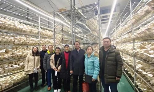 农业农村部规划院专家考察组莅临世纪香公司