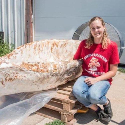 美国女大学生用蘑菇菌丝培育成独木舟 每次泛舟后它都会长大