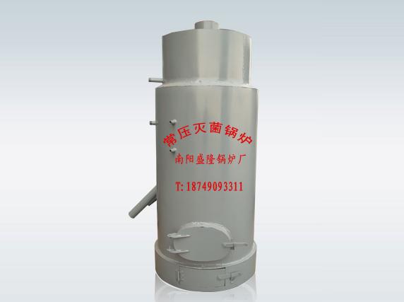 厂家食用菌灭菌锅炉(全自动补水)