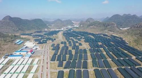 安龙县现代农业产业园跻身国家现代农业产业园创建名单