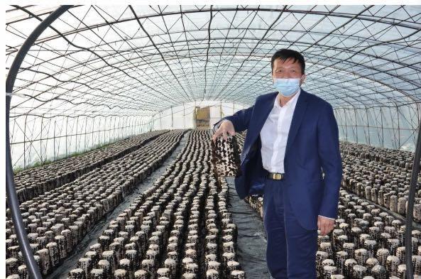 """张彦龙教授:将""""科技支农""""进行到底 践行一名科研人员为民服务的使命"""