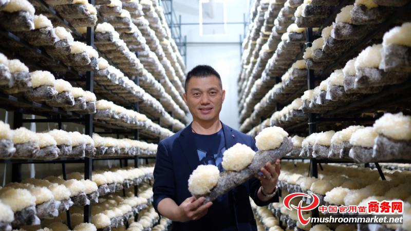 雷华乔:工厂化食用菌技术引领者