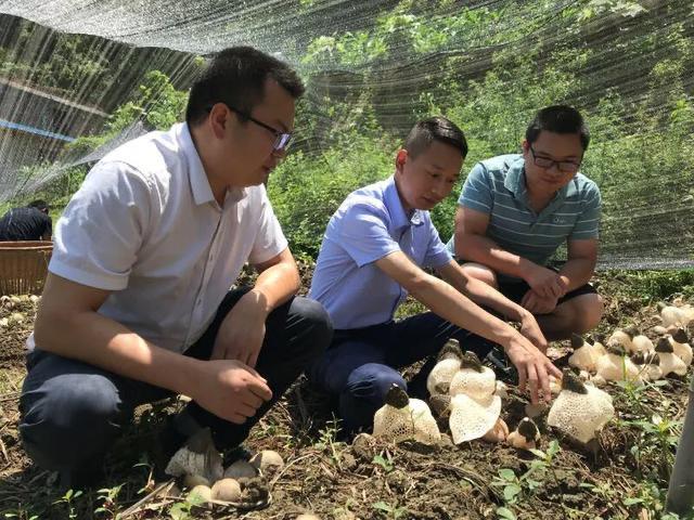四川省农业科学院土壤肥料研究所副研究员李小林:赤水丹心扶贫路