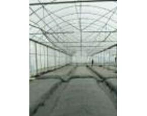 保温、加湿、遮光、隔热贵州在线配资种植遮阳网温室大棚