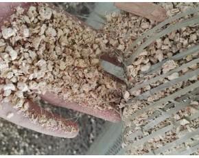 重庆供应棉籽壳,重庆供应玉米芯颗粒
