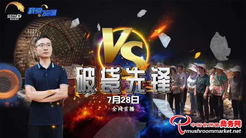 CCTV-17频道将于今日晚间播出废弃菌包的综合利用