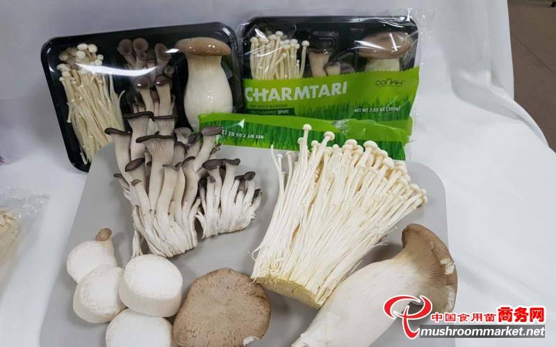 韩国:食用菌等农产品进入中国市场,机遇和挑战并存