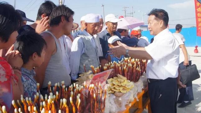 """林占熺:科技助力,小菌菇""""长""""出大市场"""