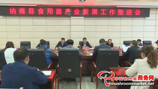 贵州纳雍县食用菌产业发展工作推进会召开