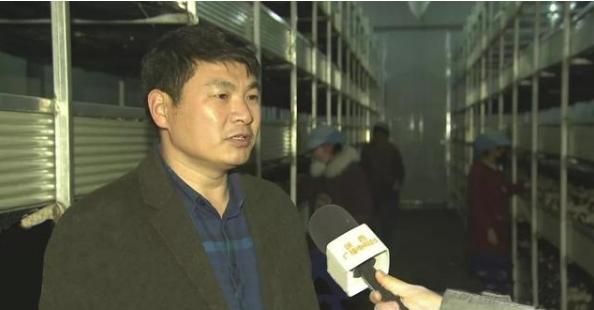 从半个门外汉到打造陕西首家菌厂,他经历了哪些发展转变?
