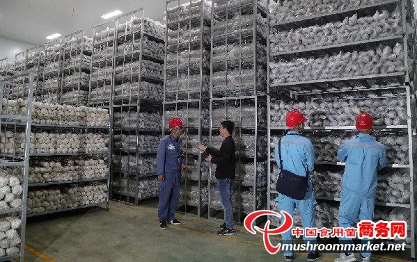 贵州安龙县:供电局上门服务 助推伟德国际手机客户端产业发展