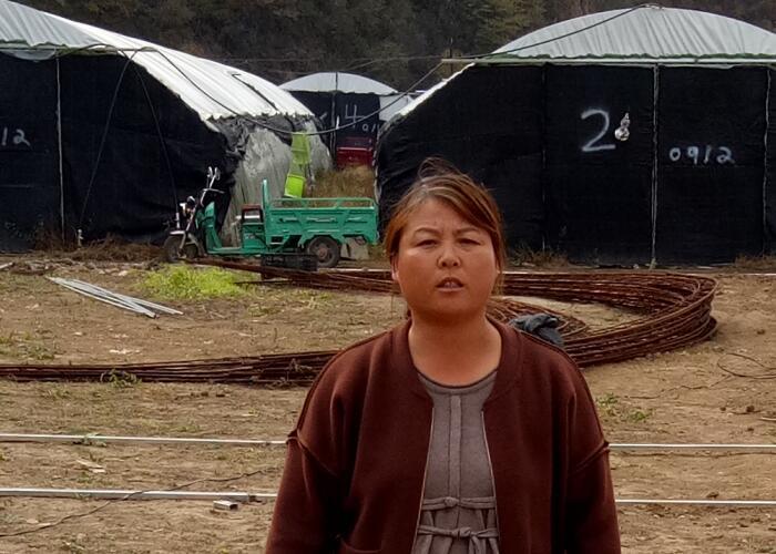 崔红艳:引领当地香菇产业化发展?助推乡村振兴