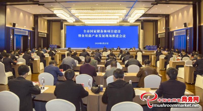 贵州毕节市国家储备林项目建设暨食用菌产业发展现场推进会议在织金县召开