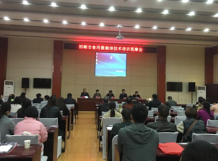 河北邯郸市食用菌栽培技术培训观摩会顺利举行