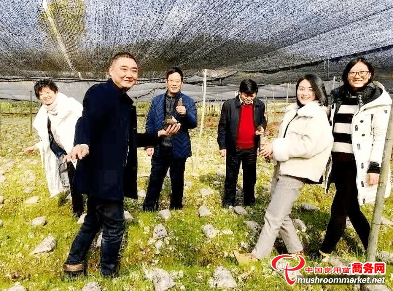 四川金堂县:羊肚菌产业让群众通过就业走上致富路
