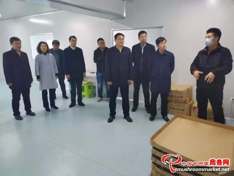 辽宁抚顺市农业农村局到顺城区调研食用菌产业